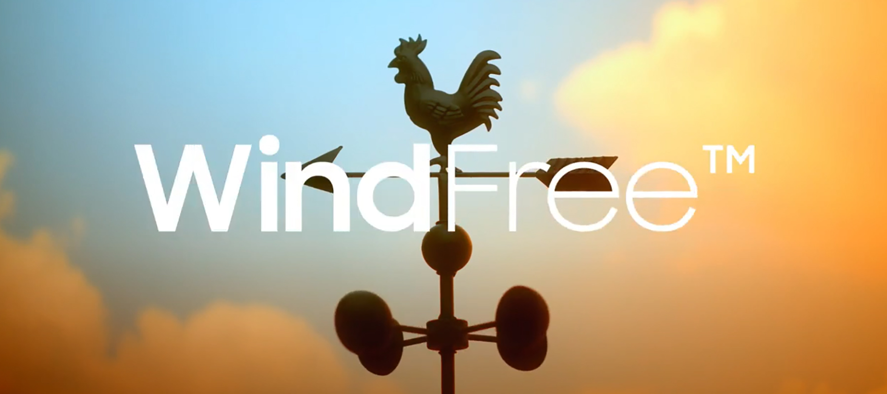 Banner Wind-Free Video
